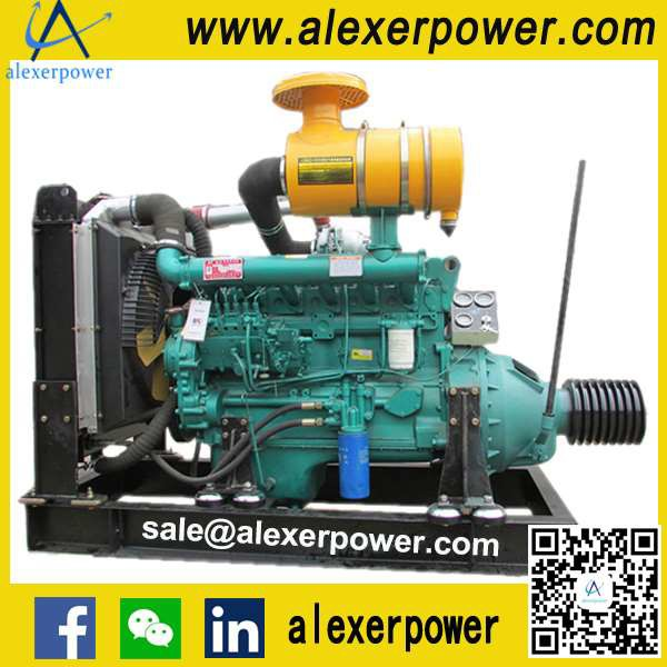 R6105AZLP Diesel Engine for PTO and Pulley Belt-1
