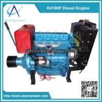 k4100p-diesel-engine-with-clutch-and-pulley-weichai-ricardo-2